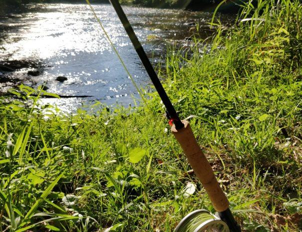 Pêche à la mouche au bord de la Sioule qui longe le Moulin